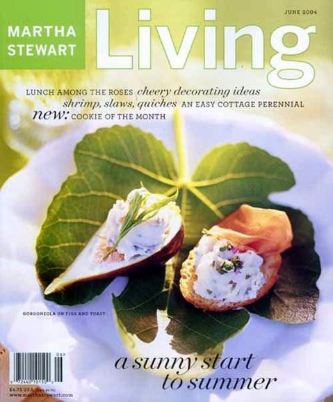 Martha Stewart Living Cover - 5/14/2004