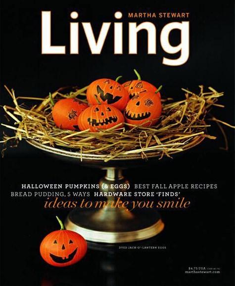 Martha Stewart Living Cover - 9/23/2004