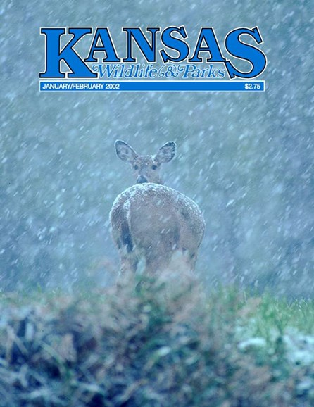Kansas Wildlife & Parks Cover - 2/1/2002