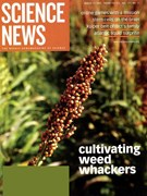 Science News Magazine 3/1/2007