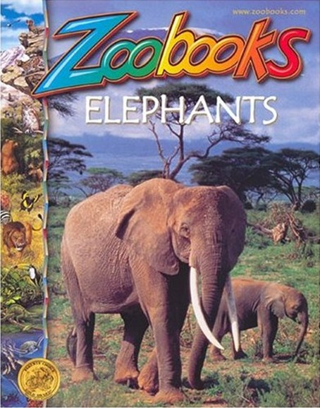Zoobooks Cover - 2/1/2008