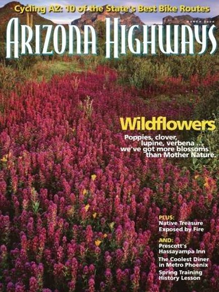 Arizona Highways Cover - 3/1/2008