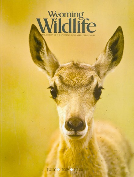 Wyoming Wildlife Cover - 7/1/2009