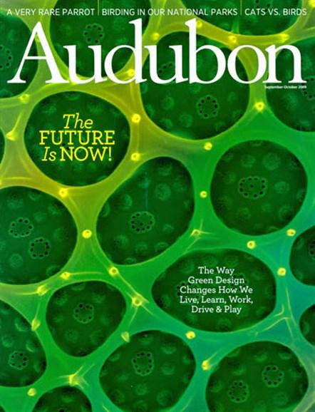 Audubon Cover - 10/1/2009