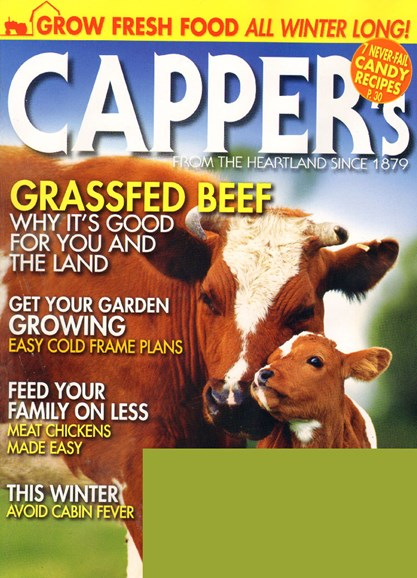 Capper's Cover - 11/1/2009