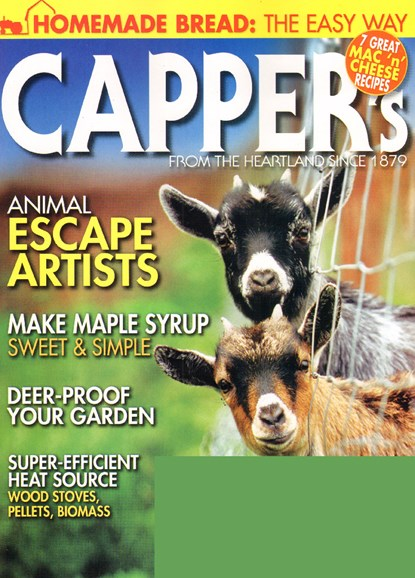 Capper's Cover - 2/1/2010