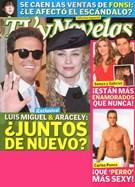 Tv Y Novelas Magazine 3/6/2010