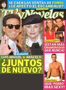 Tv Y Novelas Magazine 3/1/2010