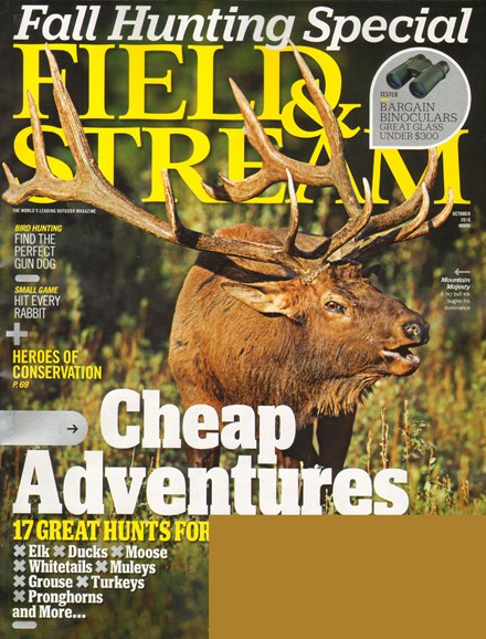 Field & Stream Cover - 10/1/2010