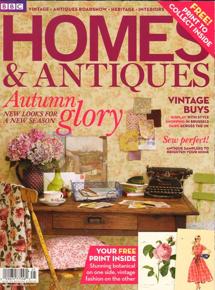 Homes & Antiques Cover - 11/1/2011