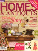 Homes and Antiques 11/1/2011