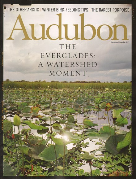 Audubon Cover - 11/1/2011