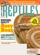 Reptiles 2/1/2012