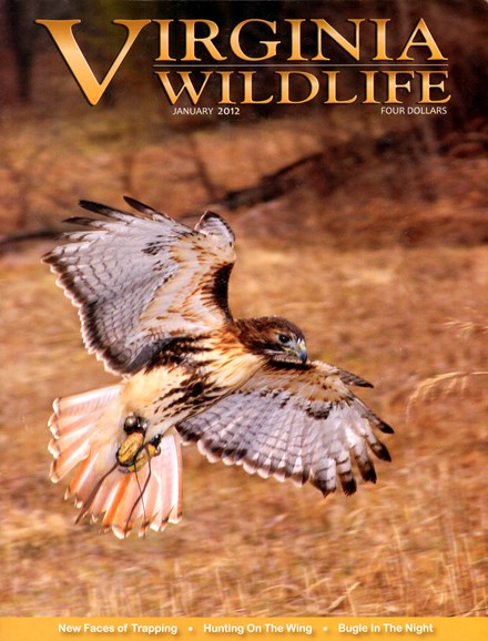 Virginia Wildlife Cover - 1/1/2012