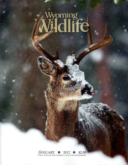 Wyoming Wildlife Cover - 1/1/2012