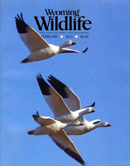 Wyoming Wildlife Cover - 2/1/2012