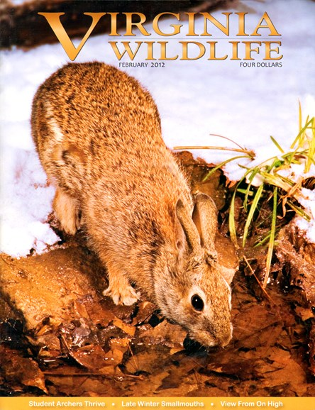 Virginia Wildlife Cover - 2/1/2012
