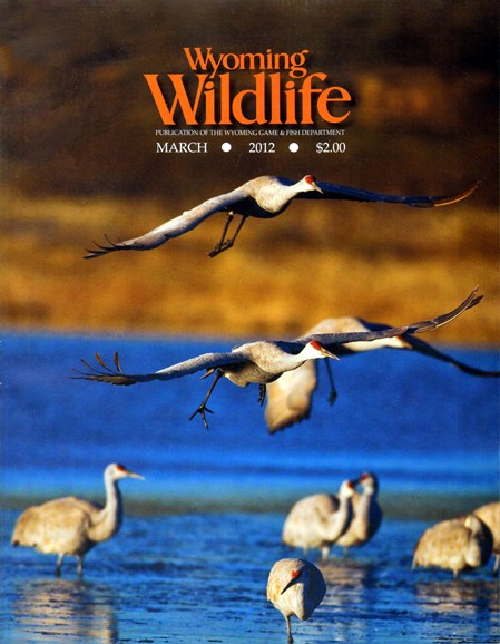 Wyoming Wildlife Cover - 3/1/2012