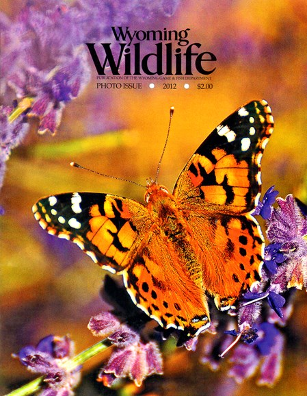 Wyoming Wildlife Cover - 4/1/2012