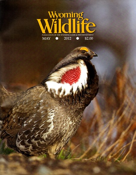 Wyoming Wildlife Cover - 5/1/2012