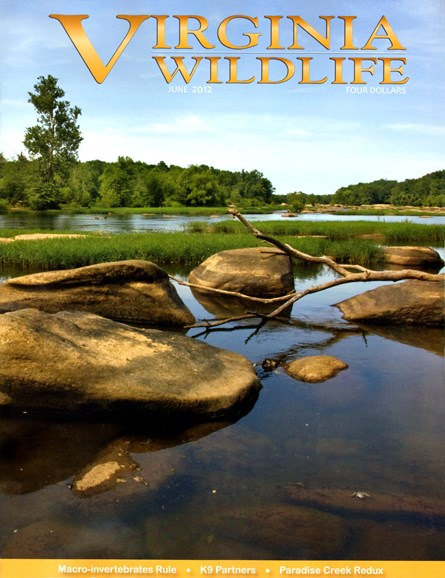Virginia Wildlife Cover - 6/1/2012