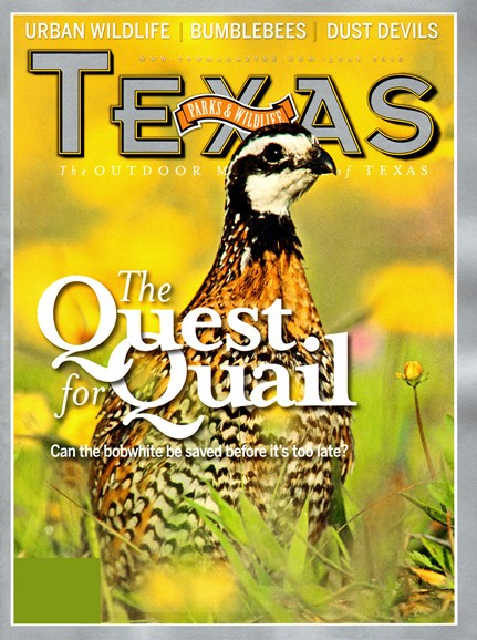 Texas Parks & Wildlife Cover - 7/1/2012