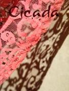Cicada Magazine 7/1/2012