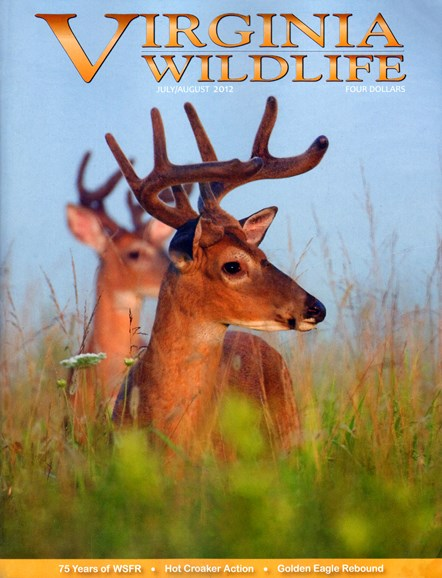 Virginia Wildlife Cover - 7/1/2012