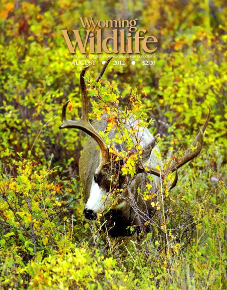 Wyoming Wildlife Cover - 8/1/2012