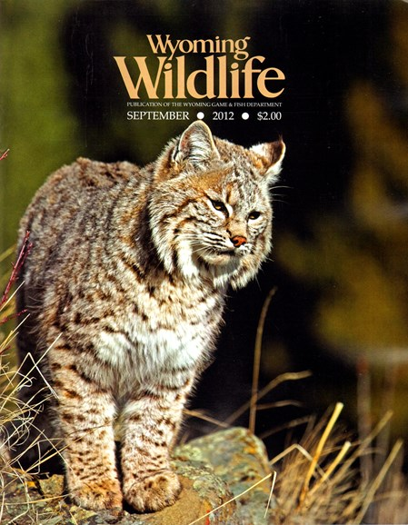 Wyoming Wildlife Cover - 9/1/2012