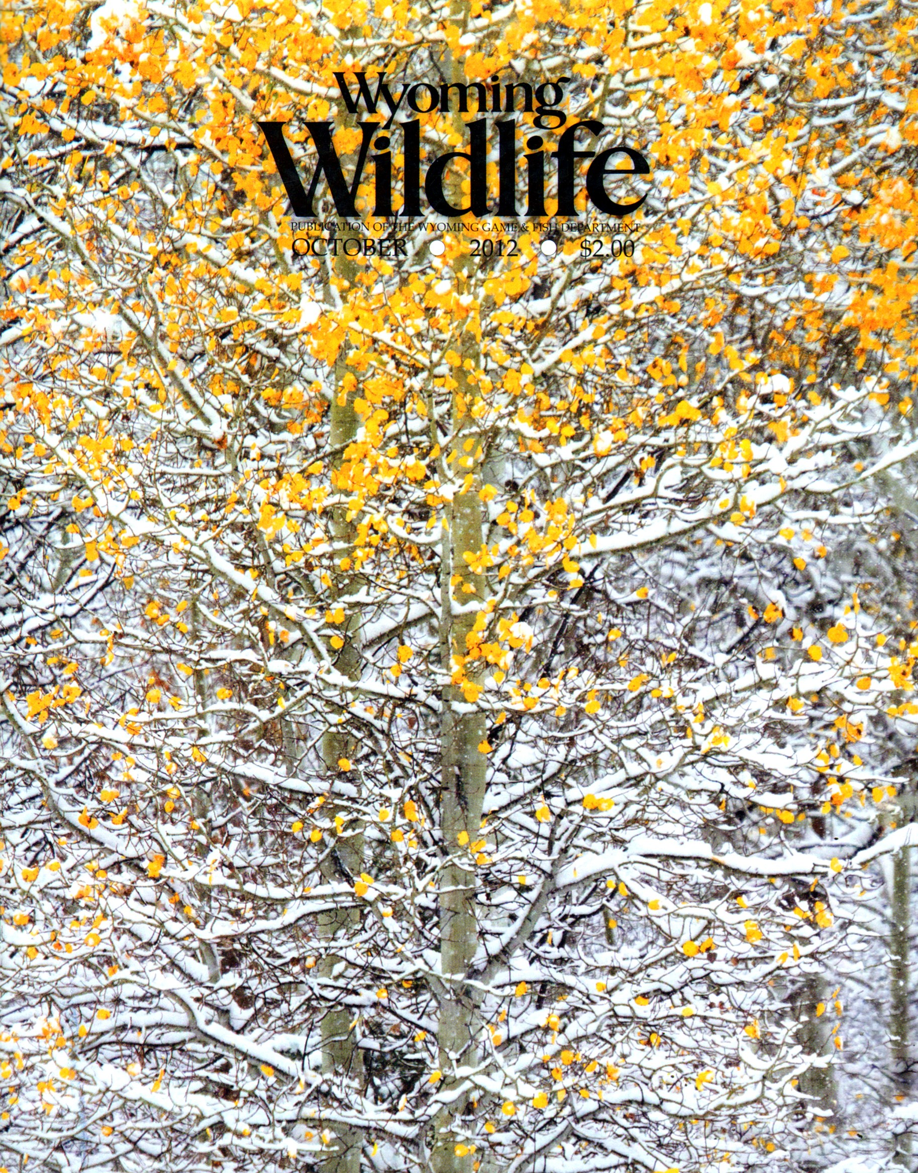Best Price for Wyoming Wildlife Magazine Subscription