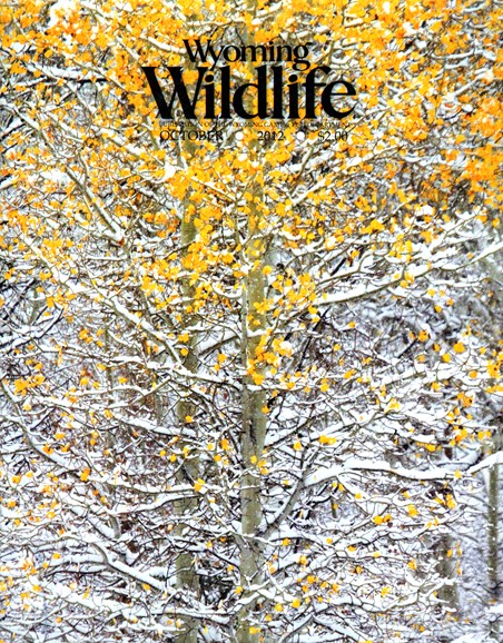 Wyoming Wildlife Cover - 10/1/2012