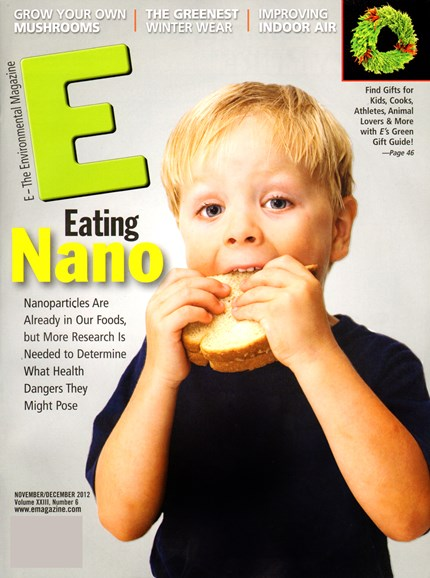 E: The Environment Magazine Cover - 11/1/2012