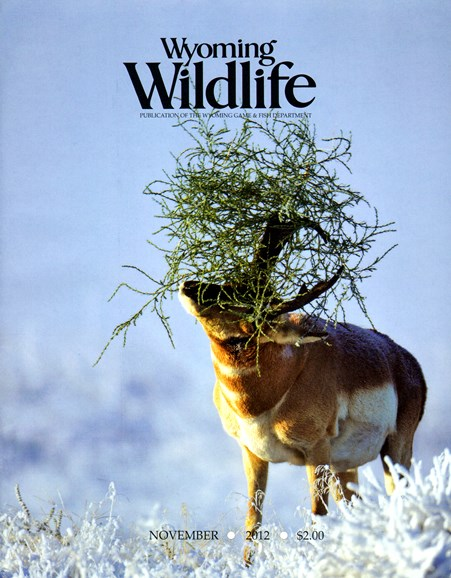 Wyoming Wildlife Cover - 11/1/2012