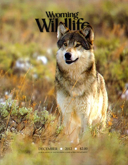 Wyoming Wildlife Cover - 12/1/2012