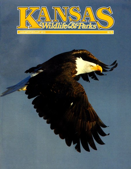 Kansas Wildlife & Parks Cover - 1/1/2013