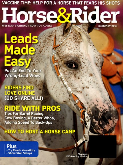Horse & Rider Cover - 2/1/2013