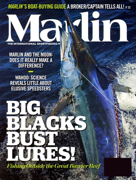 Marlin Cover - 2/1/2013