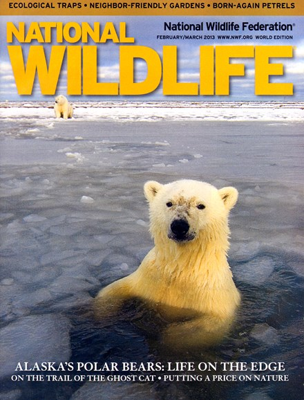 National Wildlife Cover - 2/1/2013