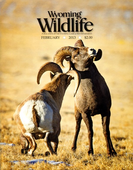 Wyoming Wildlife Cover - 2/1/2013