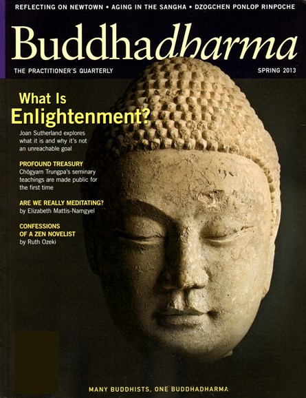 BUDDHADHARMA: THE PRACTIONER'S QUARTERLY Cover - 3/1/2013