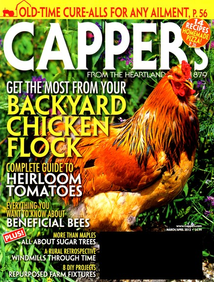 Capper's Cover - 3/1/2013