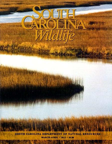 South Carolina Wildlife Cover - 3/1/2013