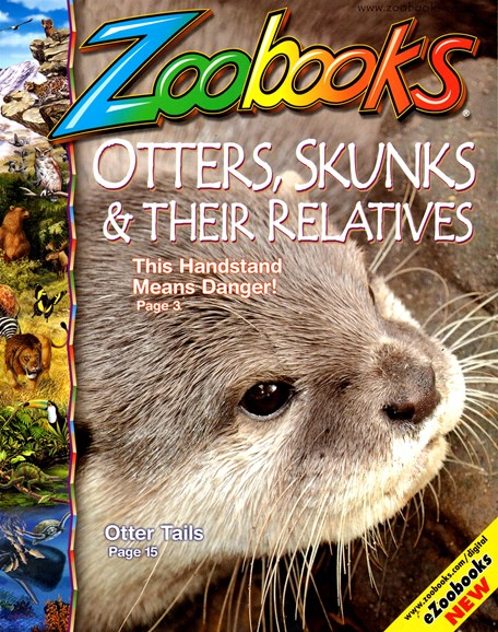 Zoobooks Cover - 1/1/2013
