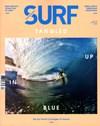 Transworld SURF | 4/1/2013 Cover
