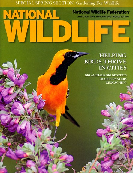 National Wildlife Cover - 4/1/2013