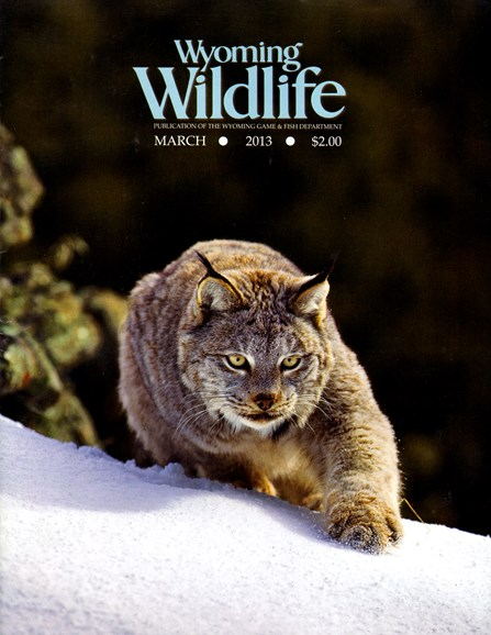 Wyoming Wildlife Cover - 3/1/2013