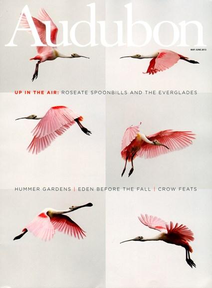 Audubon Cover - 5/1/2013