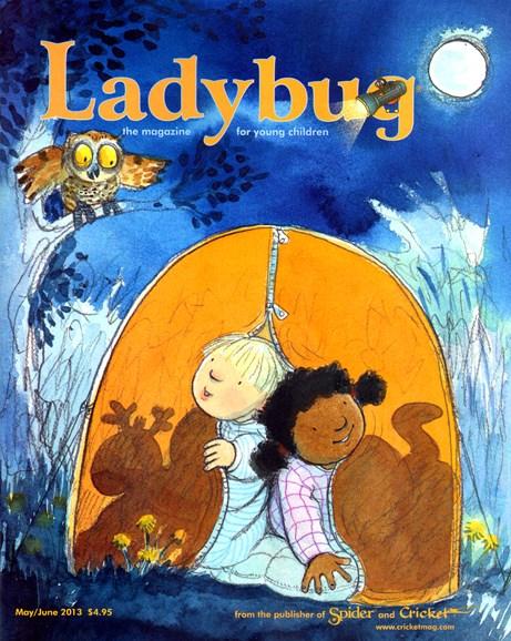 Ladybug Cover - 5/1/2013