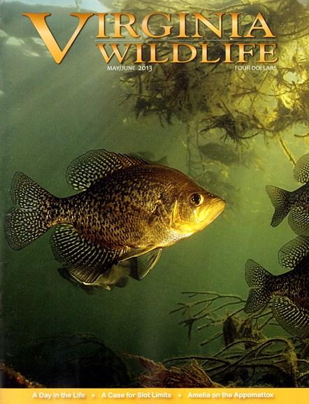 Virginia Wildlife Cover - 5/1/2013